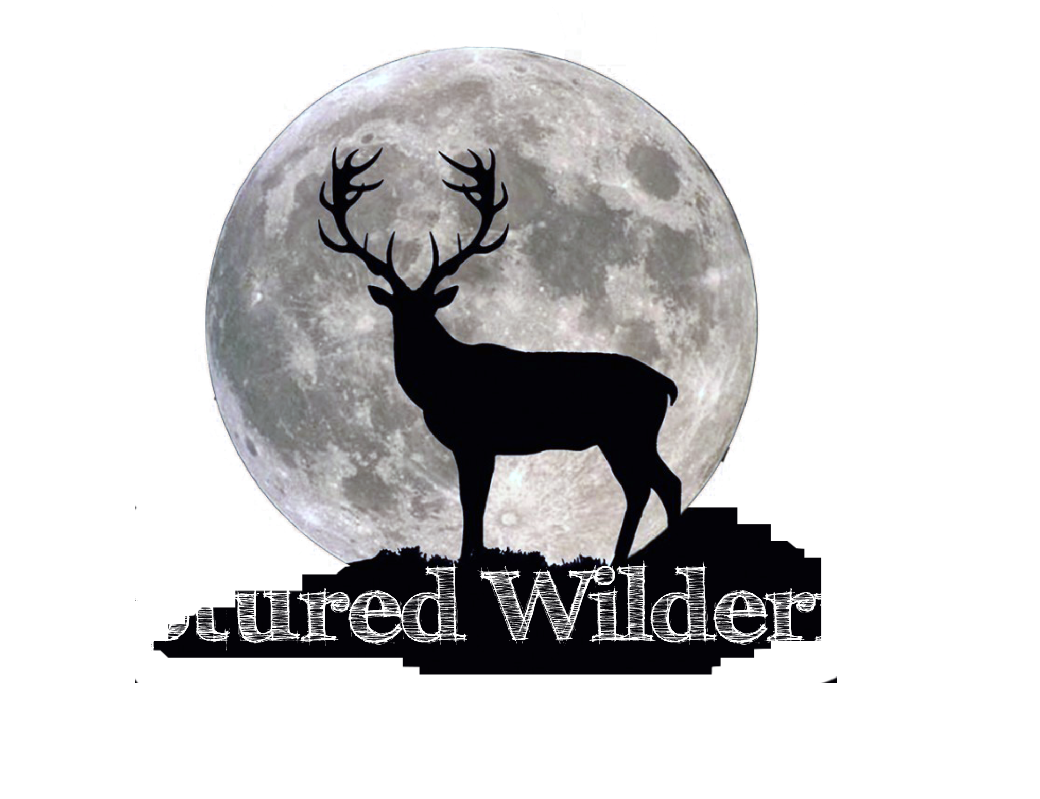 Captured Wilderness