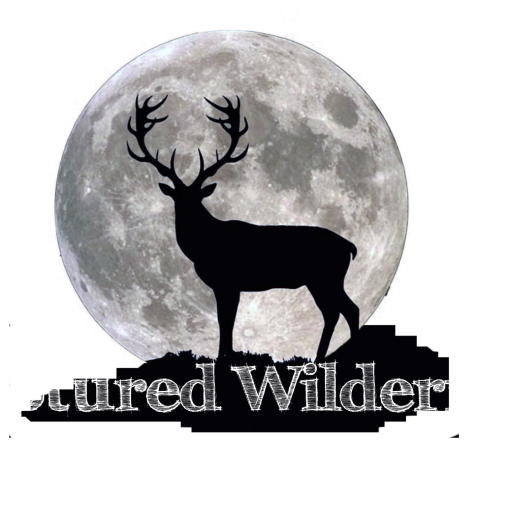 All new Captured Wilderness website